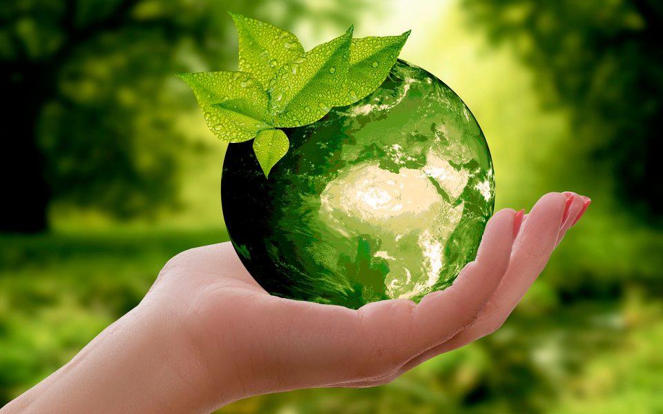 Reciclagem dos copos descartáveis!